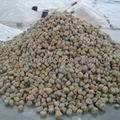 yellow sesame granite pebble