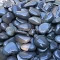 flat river rocks