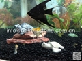 natural color aquarium pebble