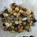 mixed color polished pebble stone