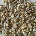 yellow sesame granite gravel
