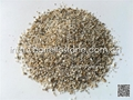 sesame yellow granite sand