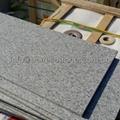 Shandong G603 white granite stone