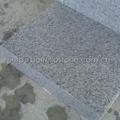 white granite paver