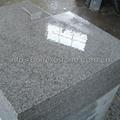 polished white granite floor tile
