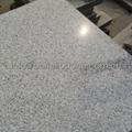 polished white granite tile 4