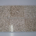 yellow sesame granite stone