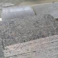 G383 light grey granite