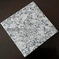 G383 grey granite blind stone