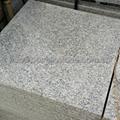 G383 polished granite tile 5