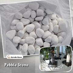 landscaping white pebble stone