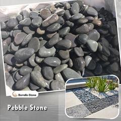 Mexican beach pebble stone
