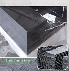 black granite step stairs