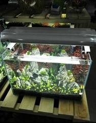水草生态鱼缸