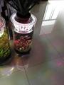 中號水草生態花瓶 3