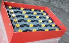 48V5PZS550AH 江苏金乐蓄电池有限公司批发