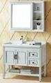 Aluminum Bathroom Cabinet