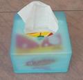 WCS-4002 Table Napkin Tissue Dispenser 2