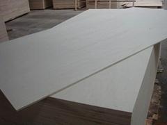 漂白楊木膠合板