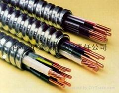 集装箱房屋用UL认证金属铠装MC电缆