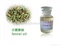 fennel oil,Foeniculum Vulgare, 8006-84-6,food additive 1