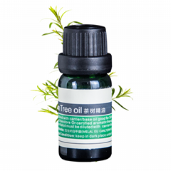 Tea Tree Essential Oil 100% Pure Undiluted Therapeutic Grade for Aromatheray