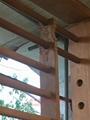 進口高檔紅木家居明清仿古滿洲窗