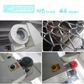 Inert material UV primer dryer with Automatic belt correction structure