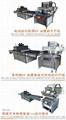 Membrane Switch auto uv Screen Printing machine 8
