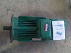 YZR电机YZR132-6/3.7KW