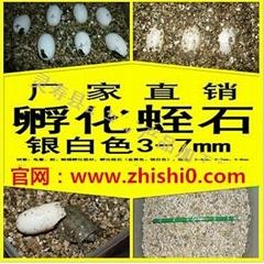 孵化膨胀蛭石