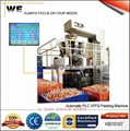 Vertical Form-Fill-Seal Machine with