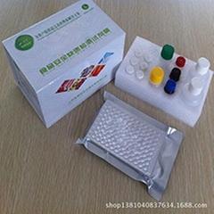 四環素類elisa檢測試劑盒