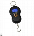 hang scale_luggage scale