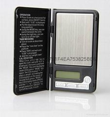 Shenzhen BDS808 portable