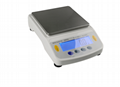 BDS precision electronic balance