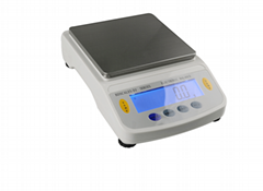 BDS precision electronic balance electronic scale weighing scale manufacturer
