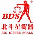 BDS-PN precision balance gold balance electronic balance weighing scale