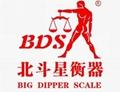 BDS-DJ-B electronic scale jewelry balance electronic balance scale  2