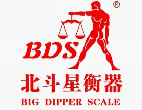 BDS precision electronic balance electronic scale manufacturer  3