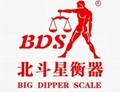 BDS precision electronic balance electronic scale manufacturer