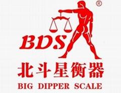 BDS-PN超強抗過載電子0.01gf精密天平秤