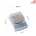 FBS diamond jewelry scale carat scale and portable precision scale