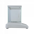 BDS-PN precision jewelry balance analytical balance precision electronic balance