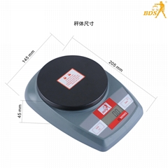深圳北斗星衡器6011教學天平秤電子秤廚房秤