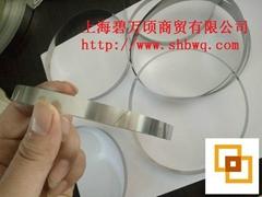 316無磁性環型鋼帶輸送帶