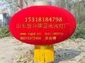南京大排档灯笼 3