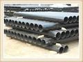 株洲柔性鑄鐵排水管 5