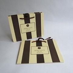 2 Pantone Colors Gift Bags Classic Stripes Tote Paper Shopper Bags