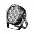12*18W LED PAR  RGBW  4IN1 Waterproof Light